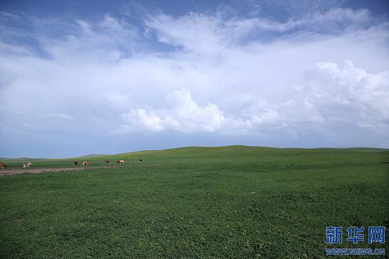 """见证绿色家园的变与不变  """"国家的孩子""""扎根草原60年"""
