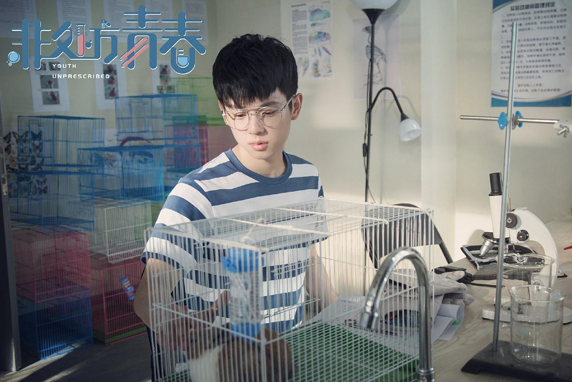 """《非处方青春》聚焦医学少年 景研竣变身天才神童成""""清流"""""""
