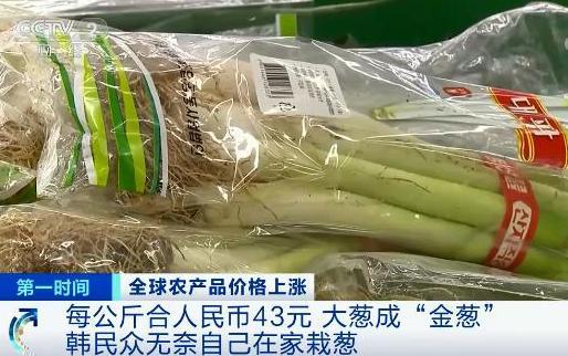 """国际粮食价格暴涨  国人十分关心,这是否会影响到中国人的""""饭碗""""?"""
