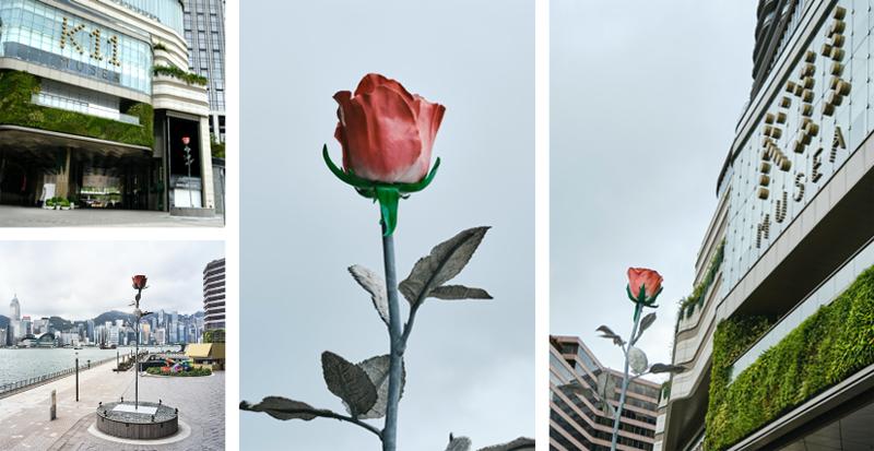 玫瑰与星光共舞,尖沙咀优购文化地标K11 MUSEA点亮维港仲夏之梦